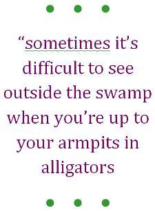 marketing swamp